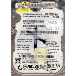 WD2500BEVS-22UST0,...